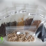 Seed Packet Refill for Home Grow Kit